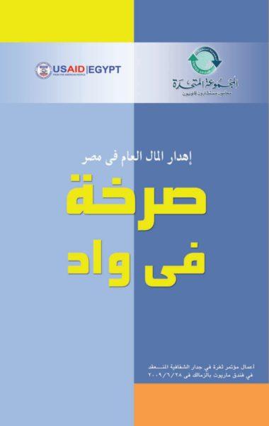 إهدار المال العام في مصر: صرخة في واد